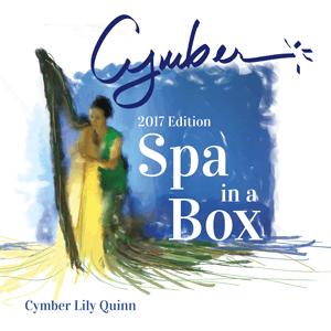 Spa in a Box (2017 Edition)