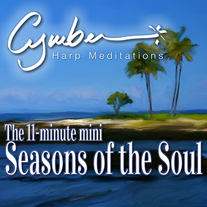 Mini Seasons of Soul