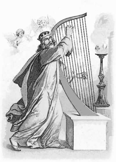 King David Cymber Lily Quinn Hilo Hawaii Harpist